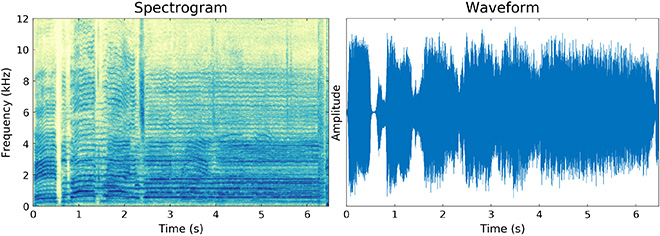 sample images showing a Spectrogram (left) and Waveform (right)