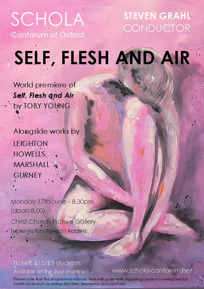 Promotional image for Self, Flesh and Air concert