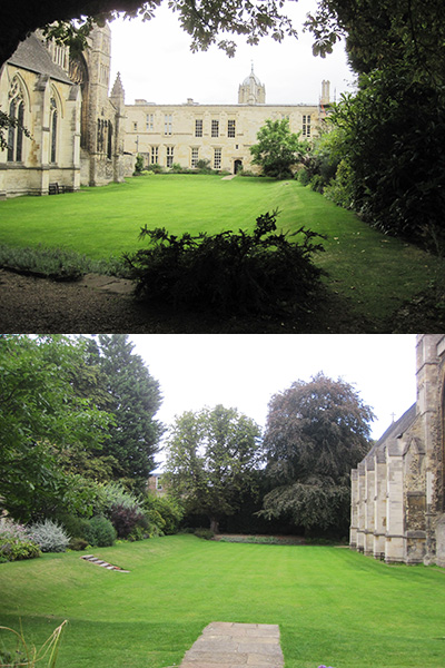 Photographs by Sarah Crouch showing two views of the Cathedal Garden looking West (top) and East (bottom)