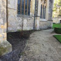 Building work complete and plants removed.