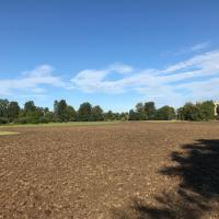 Soil cultivations complete, ready for the green hay to be spread.