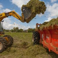 Loading the green hay into a muck spreader.  (Photo © Catriona Bass)