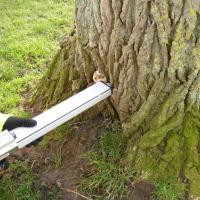 Resistograph being used at the base of a tree to investigate suspected decay. (Photo courtesy Simon Holmes, Tree Surveys).