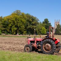 Rolling to ensure good seed/soil contact. (Photo © Catriona Bass)