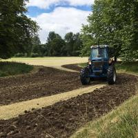 Soil cultivation using a shallow rotovator