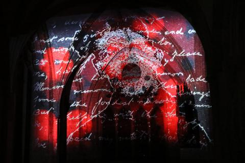Detail from projection of Popy Field: the stain of light