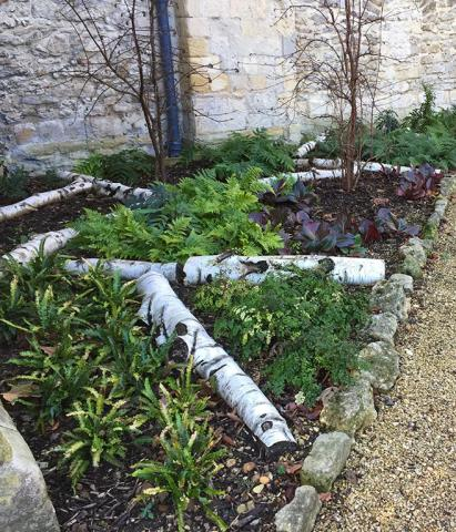 View of the planting