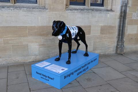 'Sirius' the black dog, installation to promote awareness of mental health