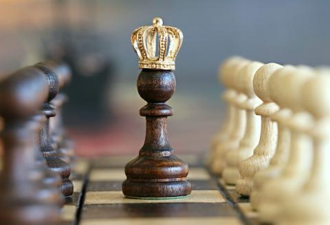 Chess players King